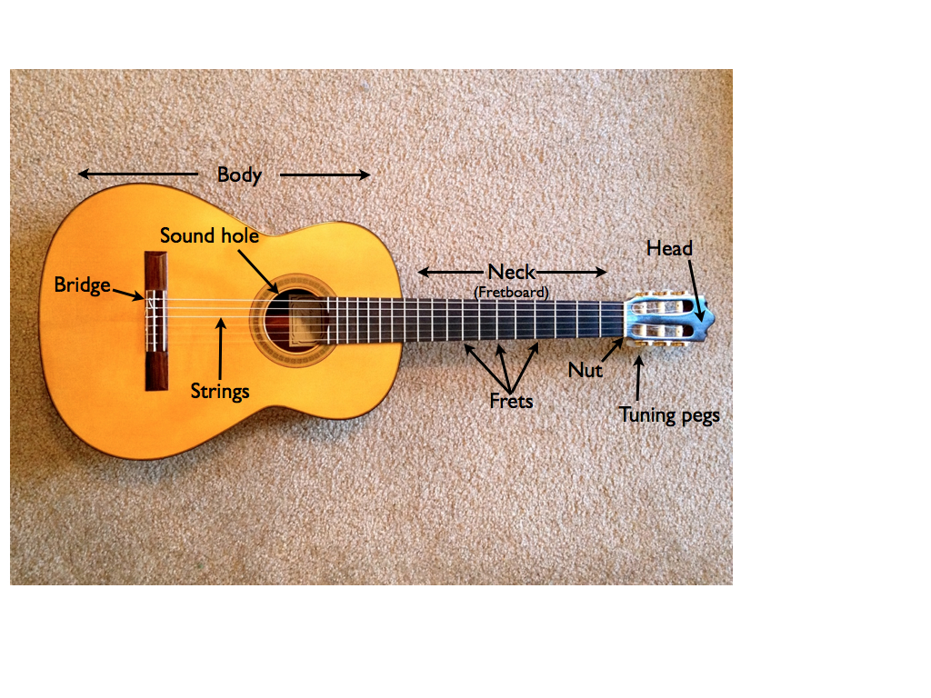 acoustic guitar labeled parts self taught guitar lessons. Black Bedroom Furniture Sets. Home Design Ideas
